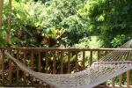 A shady spot for the hammock
