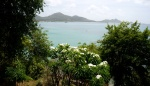 View over the garden to Hillsborough Bay