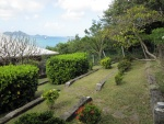 Terraced back garden