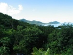 View from Backfin garden